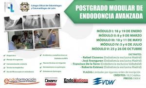 endodoncia-2013-grande