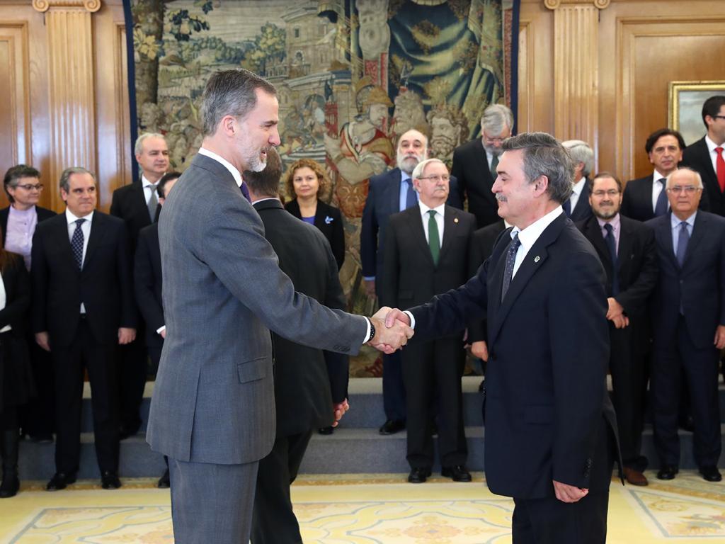 El Rey Felipe VI recibe a Unión Profesional con motivo del 40º aniversario de la Constitución española